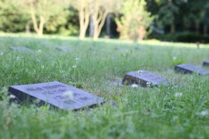 Sterblichkeit Nachlass Testament