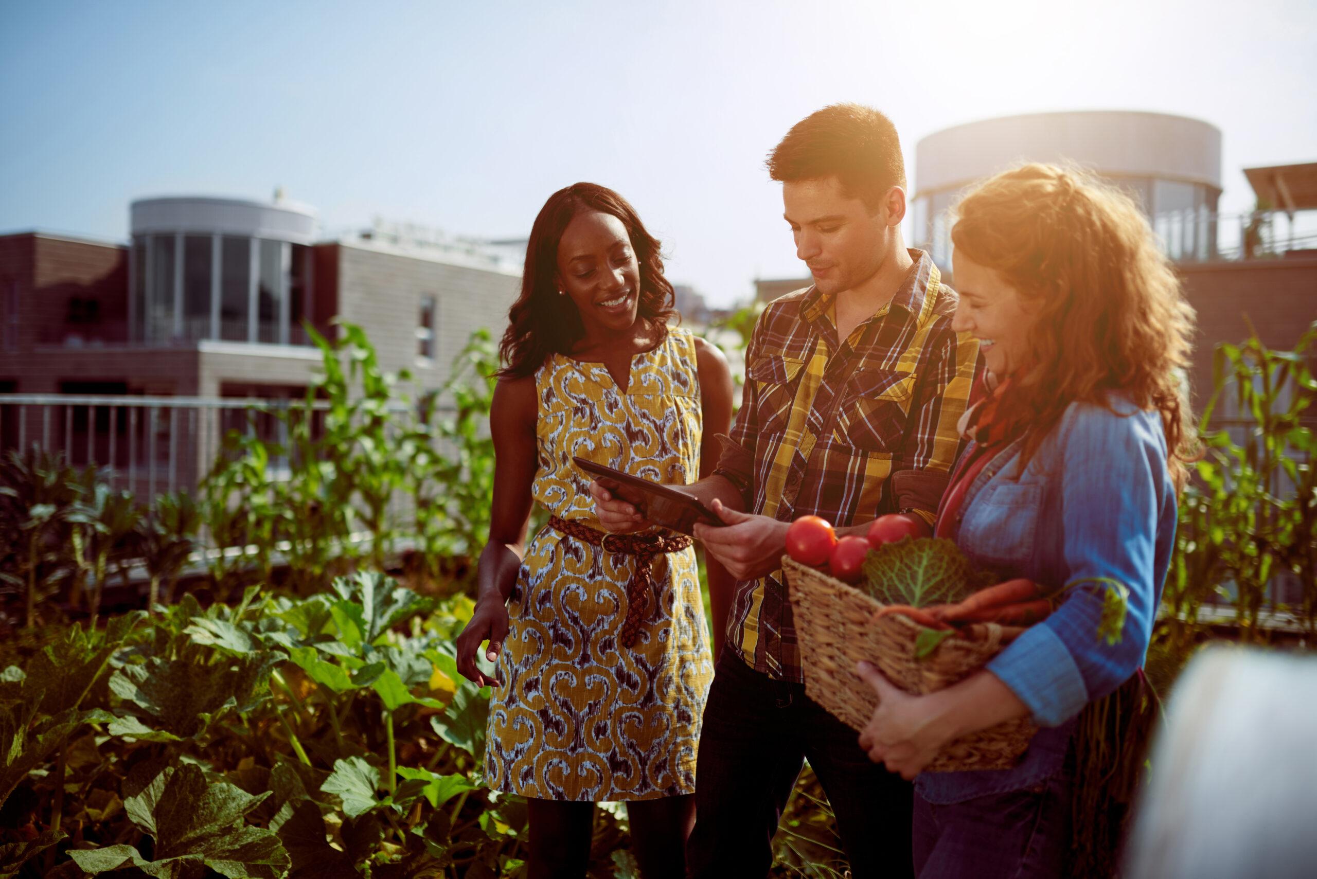 Nachhaltige Investments verstärkt bei jungen Städtern